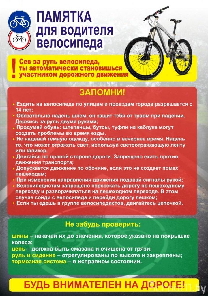 проект для школьников по велосипеду наши домашние